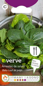Amestec de semințe de salată de prăjit