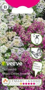 Amestec seminţe de flori ciucuşoară curgătoare, pachet 500 de seminte, culoare alb si roz asortat, parfumat
