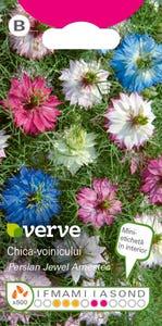Amestec seminţe de flori chica-voinicului