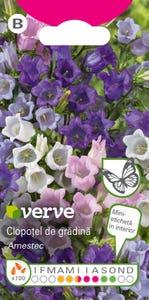 Amestec seminţe flori de clopoţel de grădină
